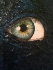 bh eye